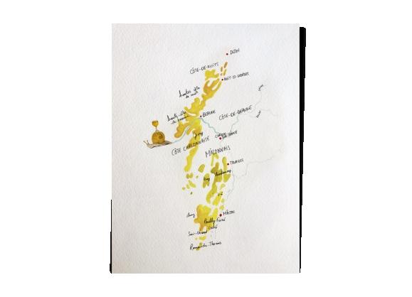 Carte des vins / Bourgogne